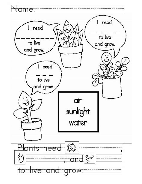 Seed Worksheets For Kindergarten by Eric Carle The Tiny Seed Worksheets Search