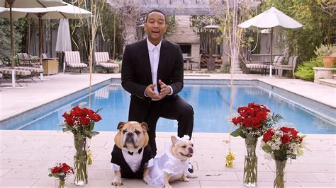 Top Wedding Songs: John Legend, Ed Sheeran, Jason Mraz