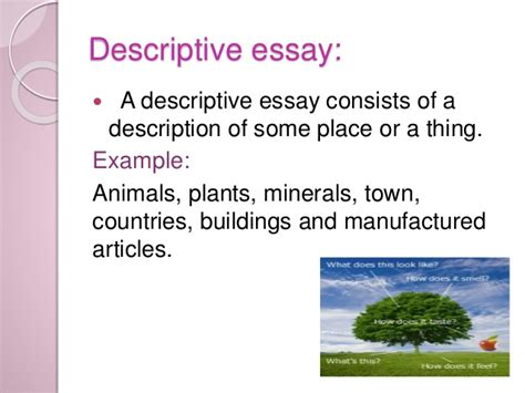 Descriptive Essay Small Town by How To Write Essay Essay Writing