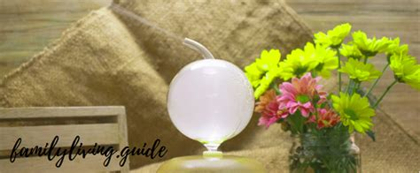 essential oil diffuser  expert reviews family