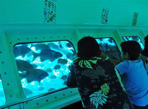 cayman islands tours enjoy the sights in cayman islands - Glass Bottom Boat Tours Grand Cayman