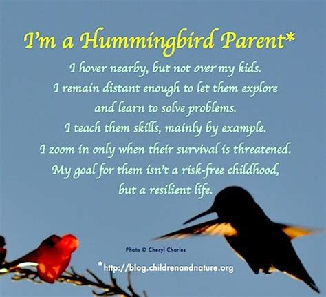 not my child navigating your childs learning difficulties with iep s and educational resources books quot i m a hummingbird parent i hover nearby but not my