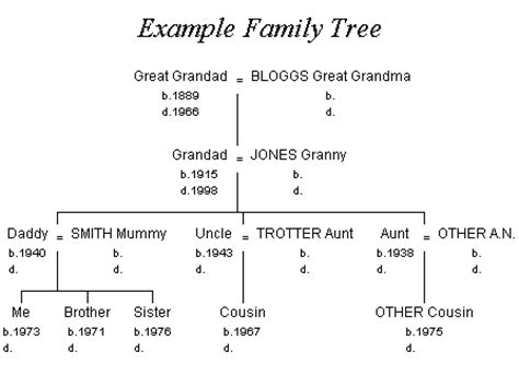 how to draw a family tree diagram taurus familytree tutorial