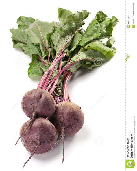 beet root vegetable beet vegetable stock photos image 11867663