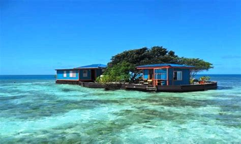bird island belize airbnb bird island belize laughing bird caye belize flickr