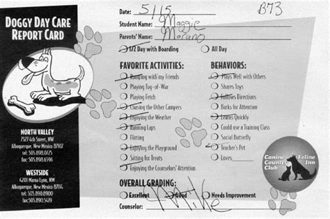 pet boarding report card template petroglyphs cover story doggie day care where a