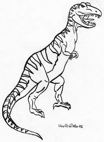 Drawing T Rex Dinosaur by How To Draw A Tyrannosaurus Rex So Much To Do So