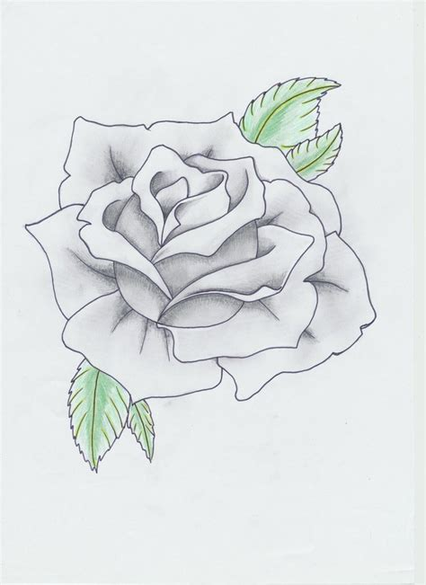 5 roses tattoo black and gray by helldemondavey on deviantart
