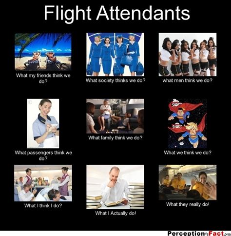 What We Think We Do Meme - flight attendants what people think i do what i