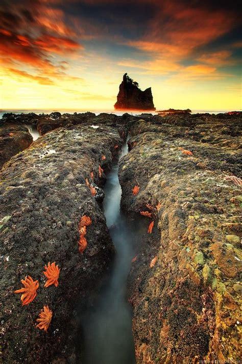Bintang Merah Bali unik pantai di selandia baru ini dikuasai pasukan bintang