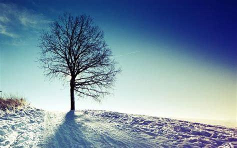 Imagenes Naturaleza Invierno | fotos de la naturaleza en invierno