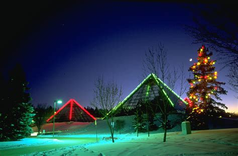 new year activities edmonton countdown at the conservatory new year s at muttart