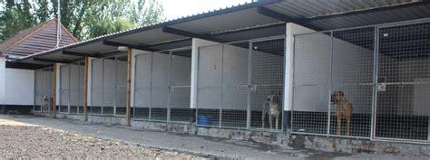 big kennels kennels southend farm