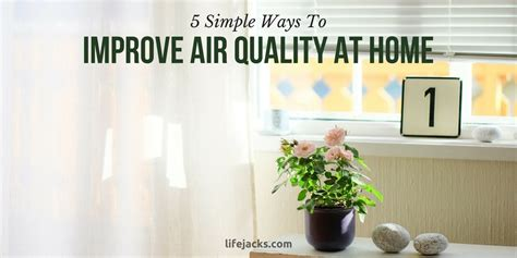 5 simple ways to improve air quality at home