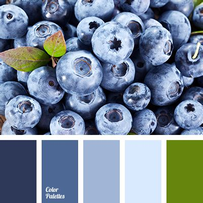what color are blueberries blueberries color color palette ideas