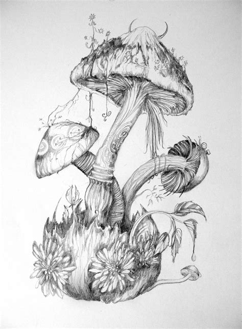 drawing and painting for adults mushrooms by 6vladimira6 on deviantart