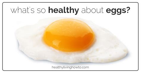 healthy fats in eggs content of an egg japanese