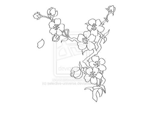 Cherry Blossom Branch Drawing Outline cherry blossom drawing best images collections hd for gadget windows mac android