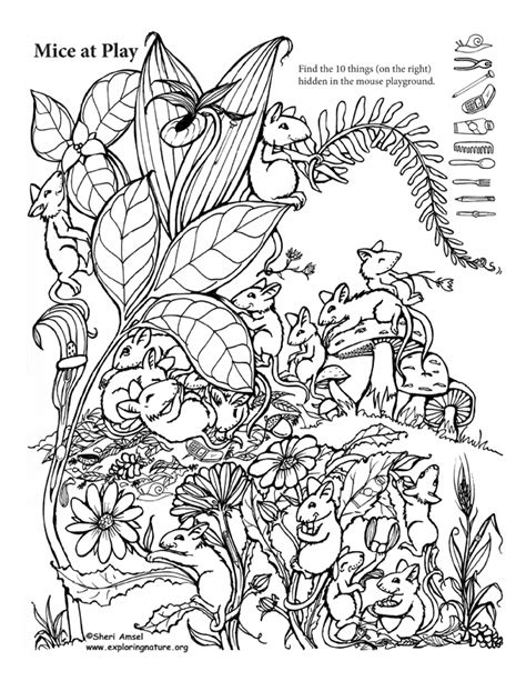 printable animal hidden pictures mice at play hidden picture