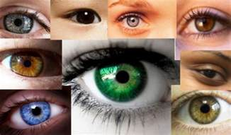 what is the most eye color rarest eye color in humans