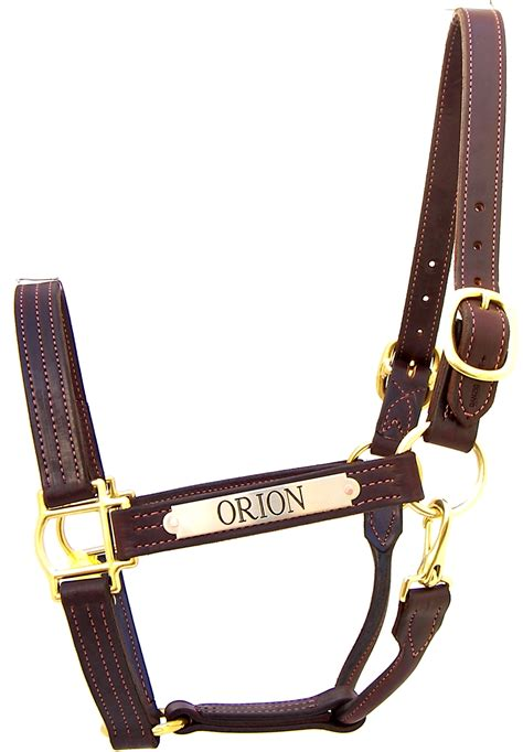 custom leather halters for horses warmblood halters solid brass hardware adjustable chin 79 00 nameplate icluded in pricing