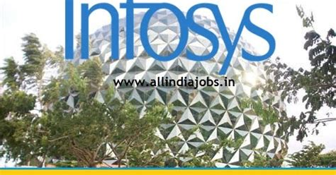 Infosys Mba Salary by Infosys Recruitment 2016 2017 For Freshers