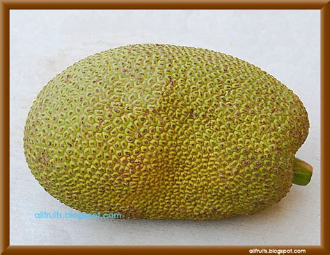 5 fruits that start with a fruits in the world fruits name starts with the letter quot j