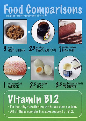 vitamina b12 alimenti vegani b vitamins sources vegetarian healthy foods for weight