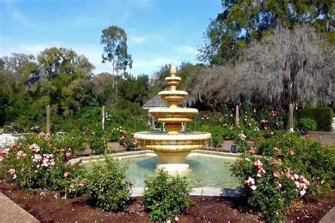 Orlando Botanical Gardens Orlando Botanical Garden Mead Botanical Gardens In Winter Park Exploring Orlando Mead