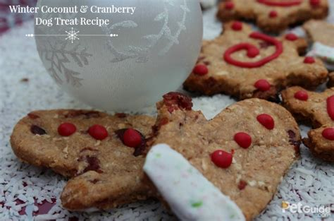 dogs and cranberries winter coconut and cranberry treat recipe