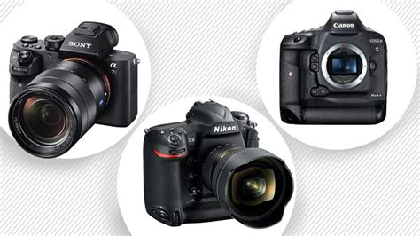 best low light dslr the best digital cameras for low light photography gq