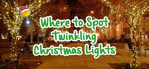 where to spot twinkling christmas lights picniq blog