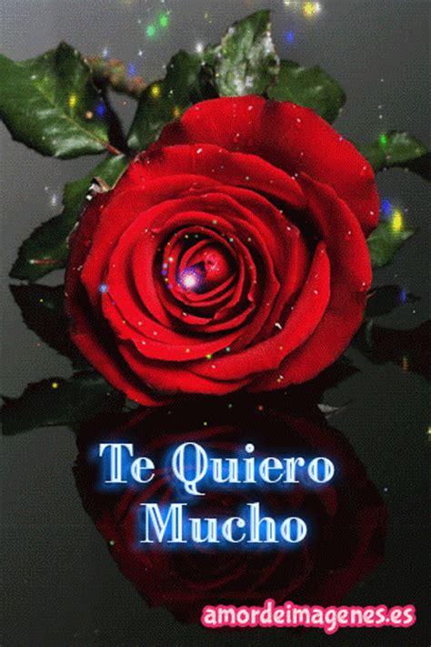 imagenes de rosas te quiero rosas en movimiento