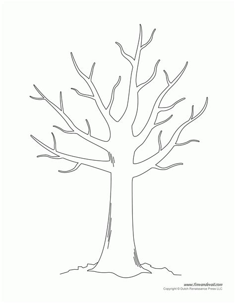 coloring pages trees and leaves coloring pages of leaves for trees coloring home
