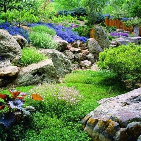 pietre da giardino roccioso creare giardino roccioso giardino fai da te
