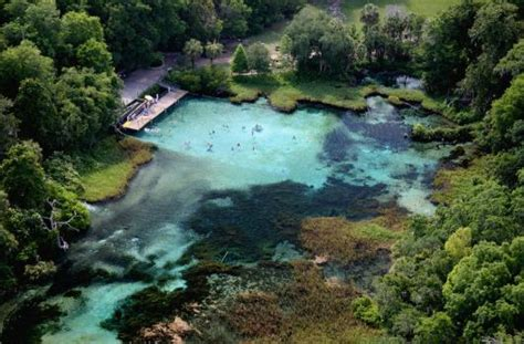 boat rides near gainesville fl paddling florida s iconic springs with the florida