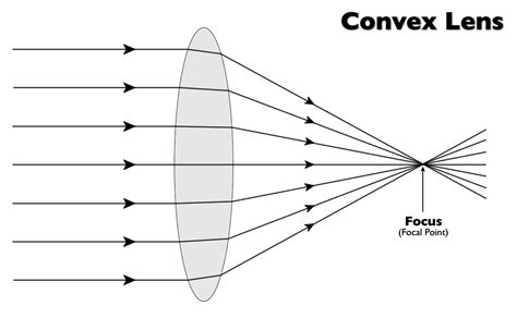 convex diagram breindel physics chapter 29 and 30