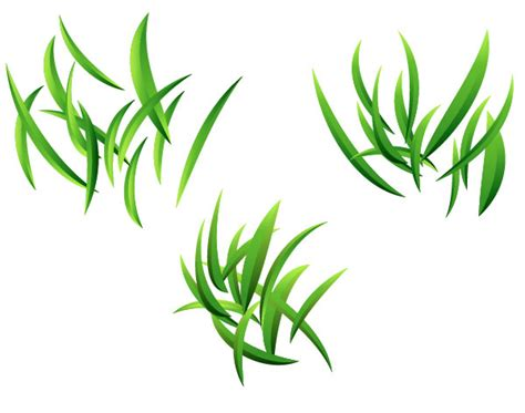 vector grass tutorial how to create vector grass background in adobe illustrator