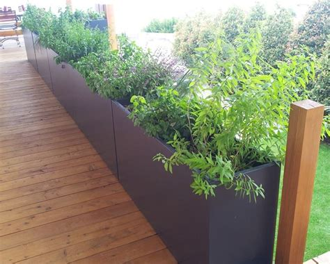 piante per fioriere fioriere per terrazzi fioriere tipologie di fioriere