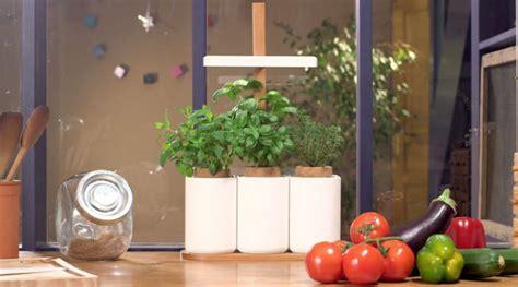Faire Pousser Legumes Interieur by Deux M 233 Thodes Pour Faire S 233 Panouir Un Mini Potager Chez Soi