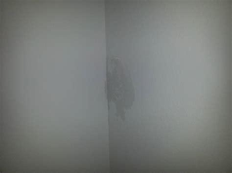 nasse flecken an der wand kondensat bei kamindurchf 252 hrung seite 2 bauforum auf