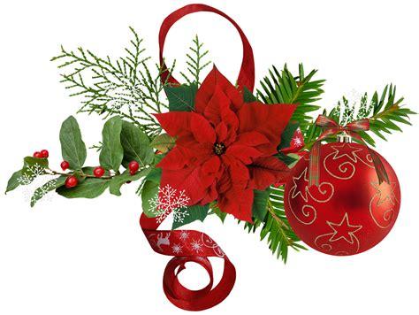 imagenes flores de navidad 174 blog cat 243 lico navide 241 o 174 im 193 genes de flores de navidad