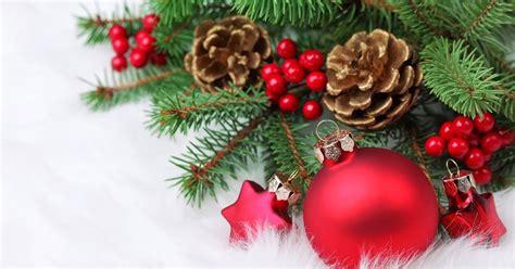 tannenzapfen weihnachten zweige hd hintergrundbilder