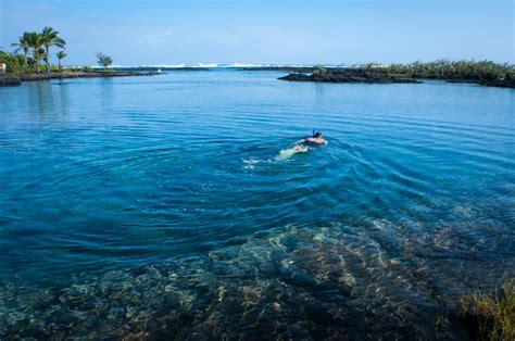 Big island adventures tide pools around pahoa