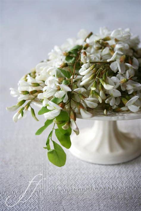 stassen fiori akazienbl 252 ten im teigmantel foto e fornelli