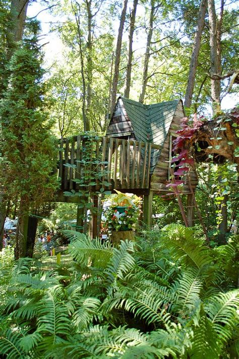 ohio tree houses and trees on