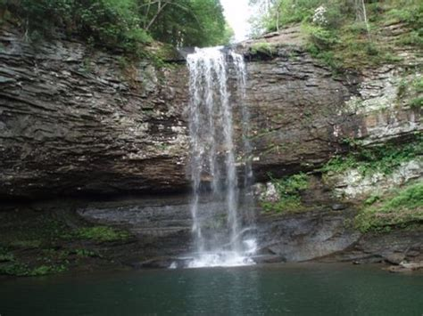 Cloudland State Park Cabin Rentals by Rising Fawn Tourism And Travel 3 Things To Do In Rising