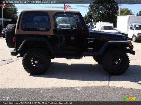 2002 Black Jeep Wrangler 2002 Jeep Wrangler Sport 4x4 In Black Photo No 36161434