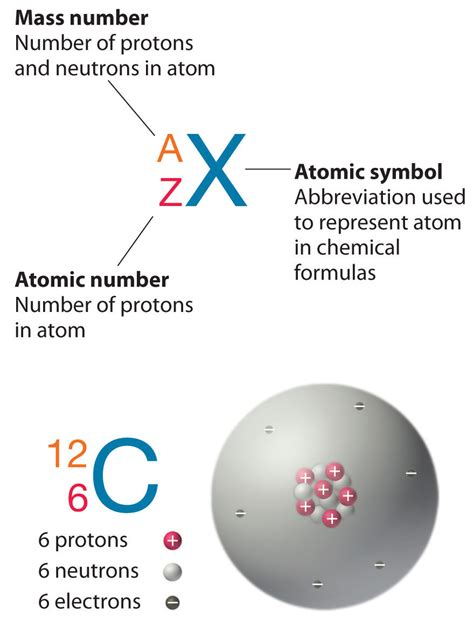 Number Of Protons Carbon Isotopes And Atomic Masses