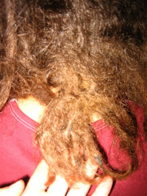 how to reattach dreadlocks dreadlock repair and reconstruction dreadlocks org